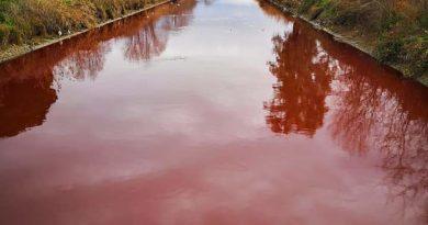 Latina – Il Canale di Rio Martino si Tinge di Rosso