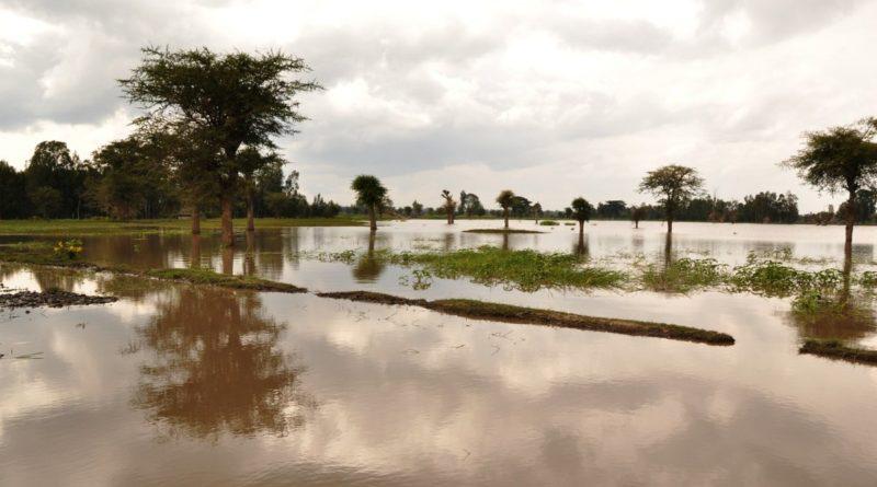Cosa fare in caso di alluvione